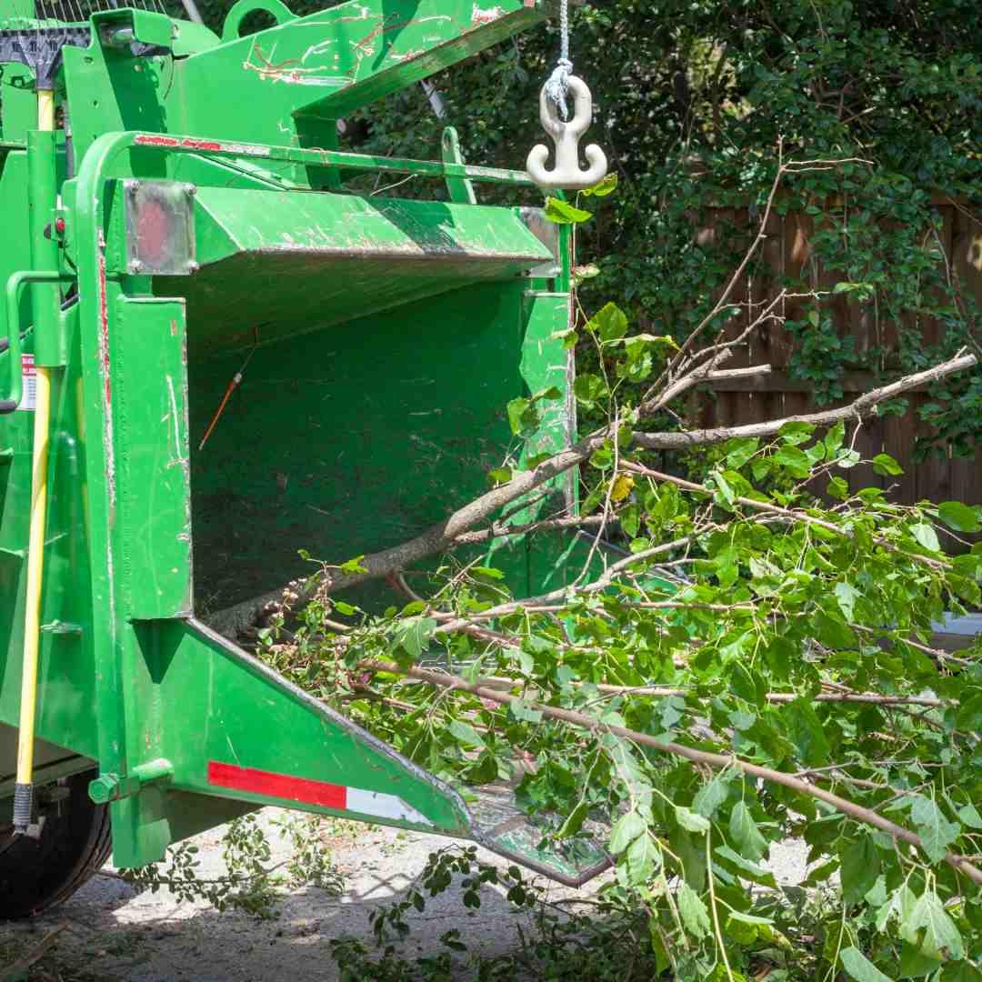 Tree Service Durham NC -tree shredder