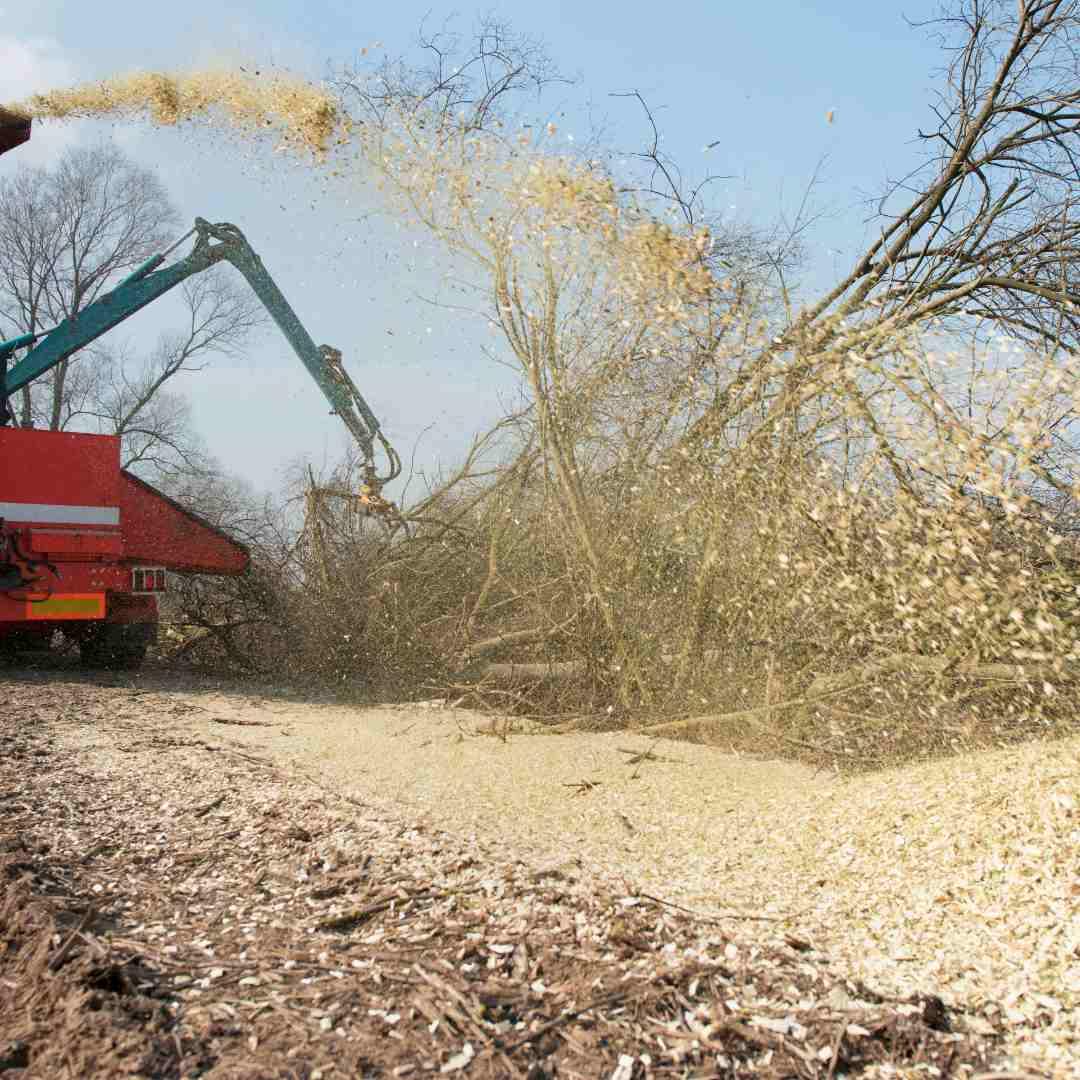 Tree Service Durham NC- wood shredder 3